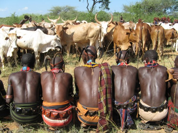 Men of the Hamer tribe watch over their cattle.